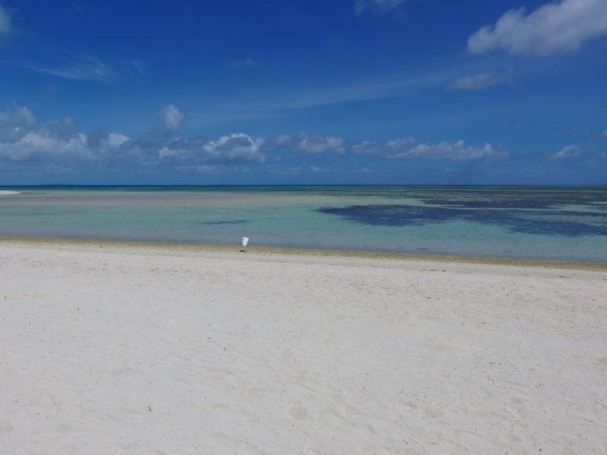 6月下旬人の少ない竹富島砂浜の白さと海の青さの境界を舞う一羽のしらさぎ