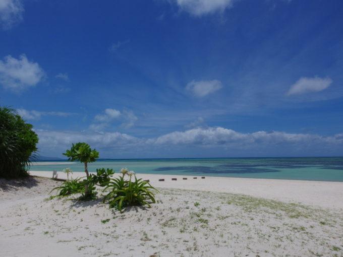 6月下旬人の少ない竹富島後ろ髪を引かれつつも今年のコンドイビーチに別れを告げる
