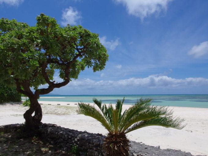 6月下旬人の少ない竹富島コンドイビーチを去る前にもう一度