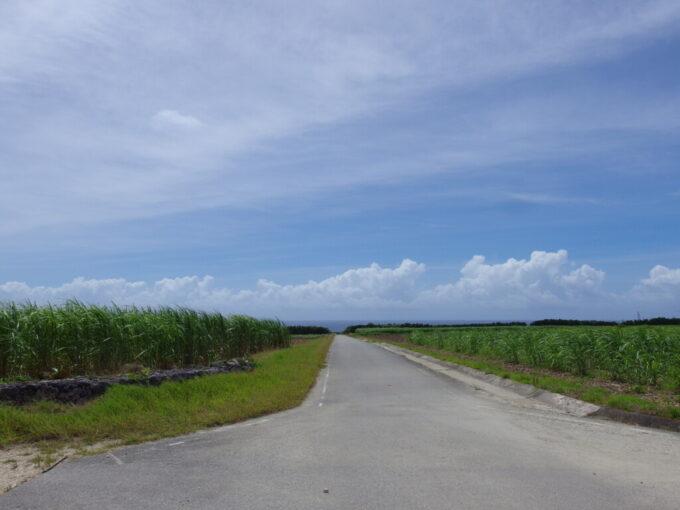 6月下旬人の少ない有人島日本最南端波照間島さとうきび畑を海に向かって一気に駆け下りる