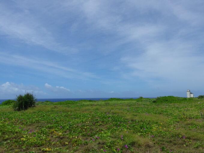 6月下旬人の少ない有人島日本最南端波照間島ハマヒルガオと星空観測タワー