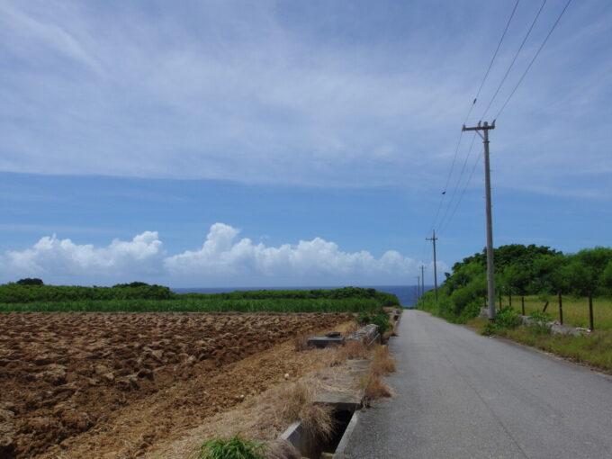 6月下旬人の少ない有人島日本最南端波照間島坂の上から海とさとうきび畑を望む