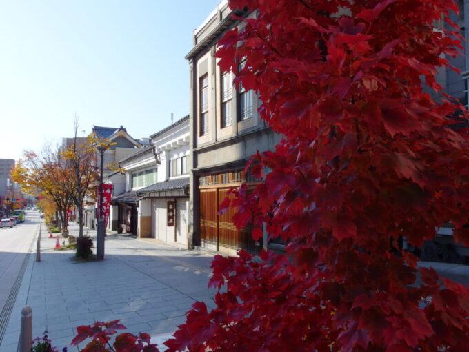 11月中旬紅葉の美しい長野善光寺参道