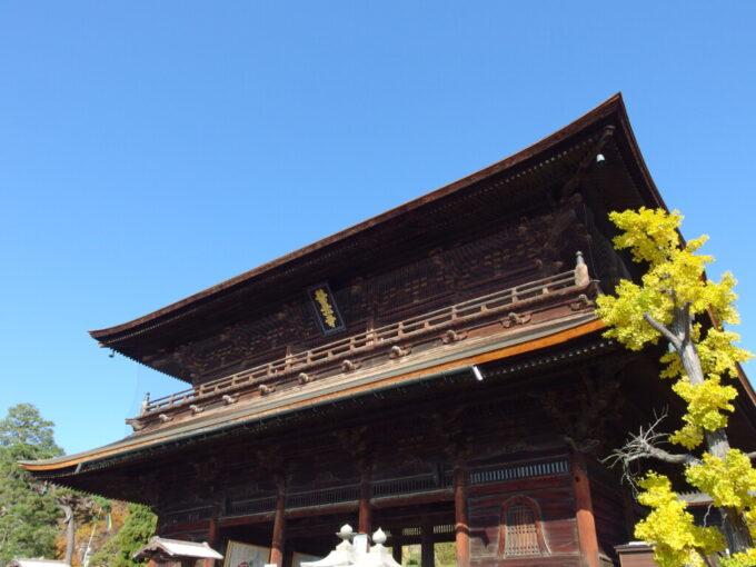 11月中旬銀杏に彩られる信州善光寺の山門