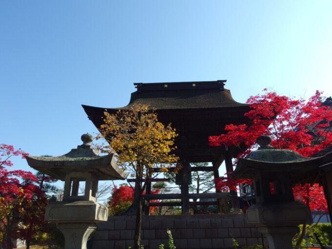 11月中旬紅葉に染まる信州善光寺の鐘楼