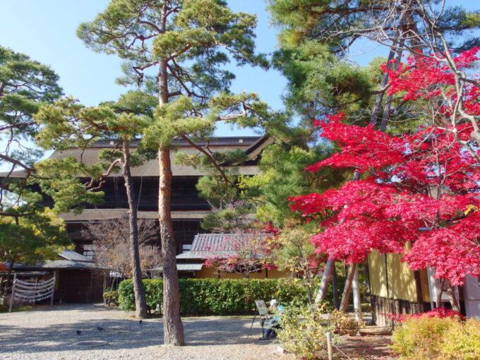 11月中旬信州善光寺風情溢れる秋色の境内