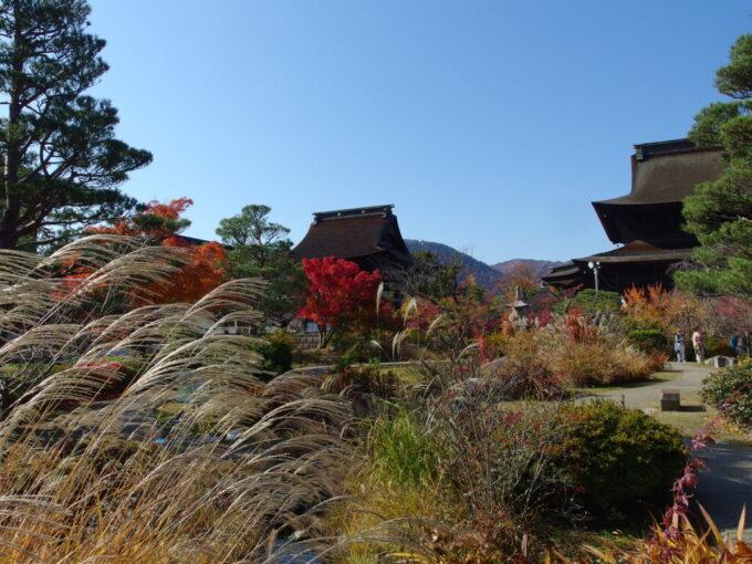秋色の風情にあふれる善光寺