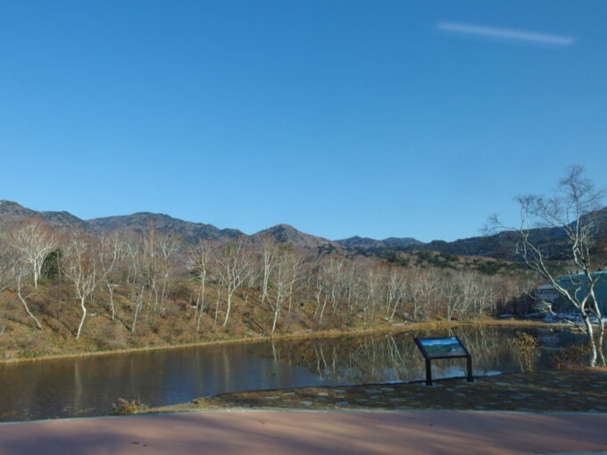 11月中旬長電バス車窓から望む蓮池