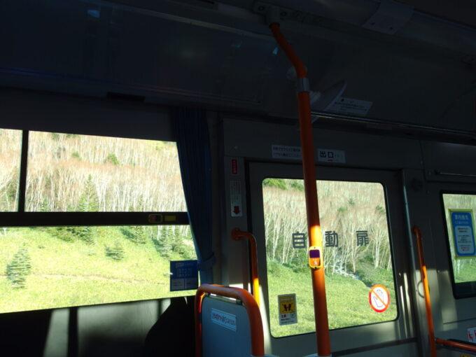 11月中旬長電バス白根火山線車窓を染める白樺林