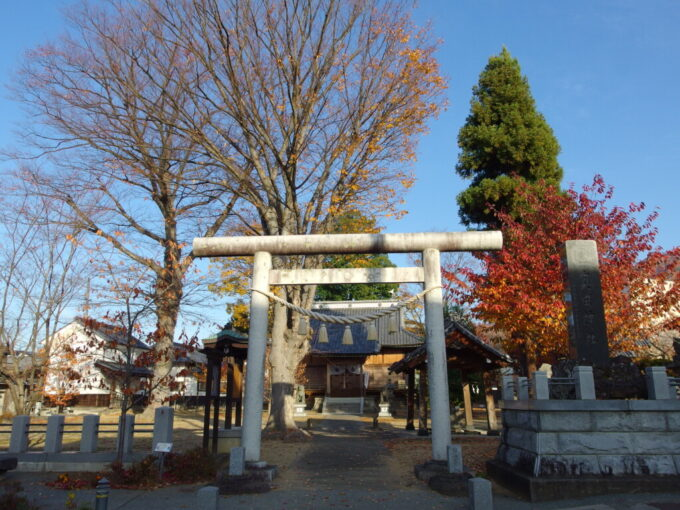 11月中旬の須坂須坂藩居館跡奥田神社